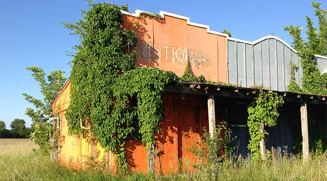 An abandoned wooden storefront is in the center of the image, with weeds surrounding the ground and vines growing up the sides and front of the building. A clear blue sky is overhead.