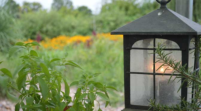 A lantern with 3 lit candles sits in the right foreground, and a small, bright green plant in a terracotta pot is in the left foreground. The blurred background contains a small yard with multicolored flowers in the distance and a patch of tall grass in front of them.